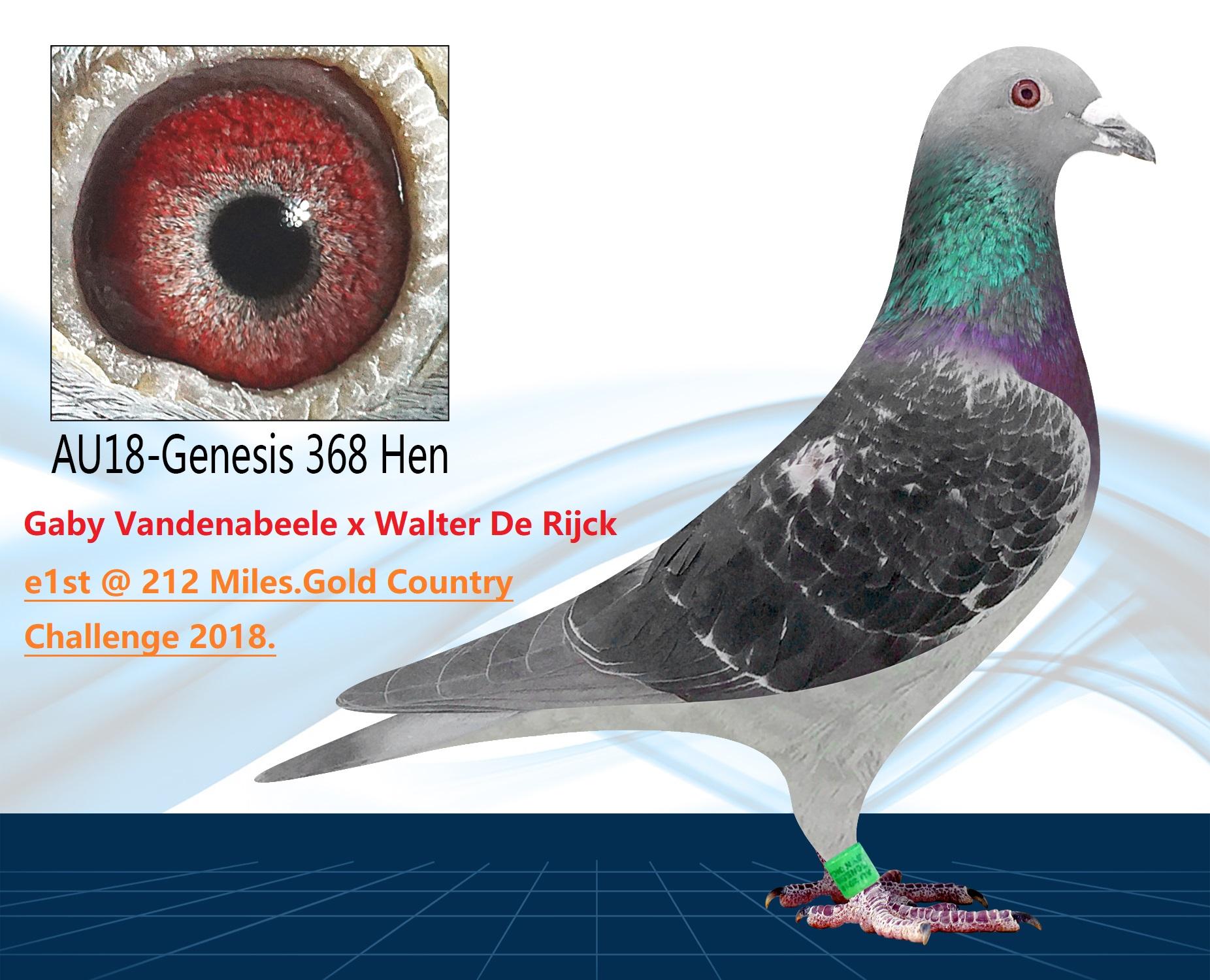 AU18-368(Hen) OLR Price Winner