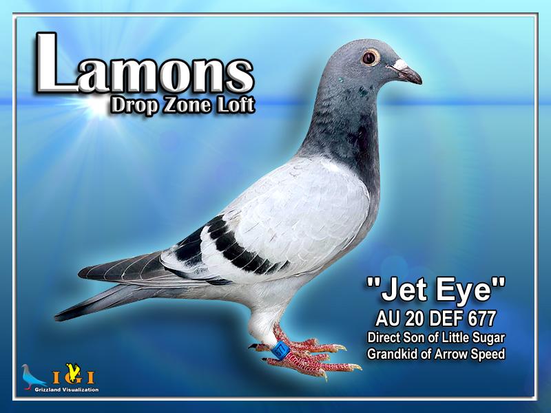 Jet Eye