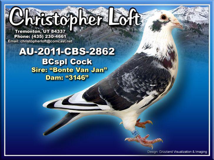 AU-2011-CBS-2862