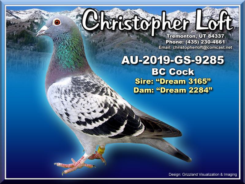 AU-2019-GS-9285
