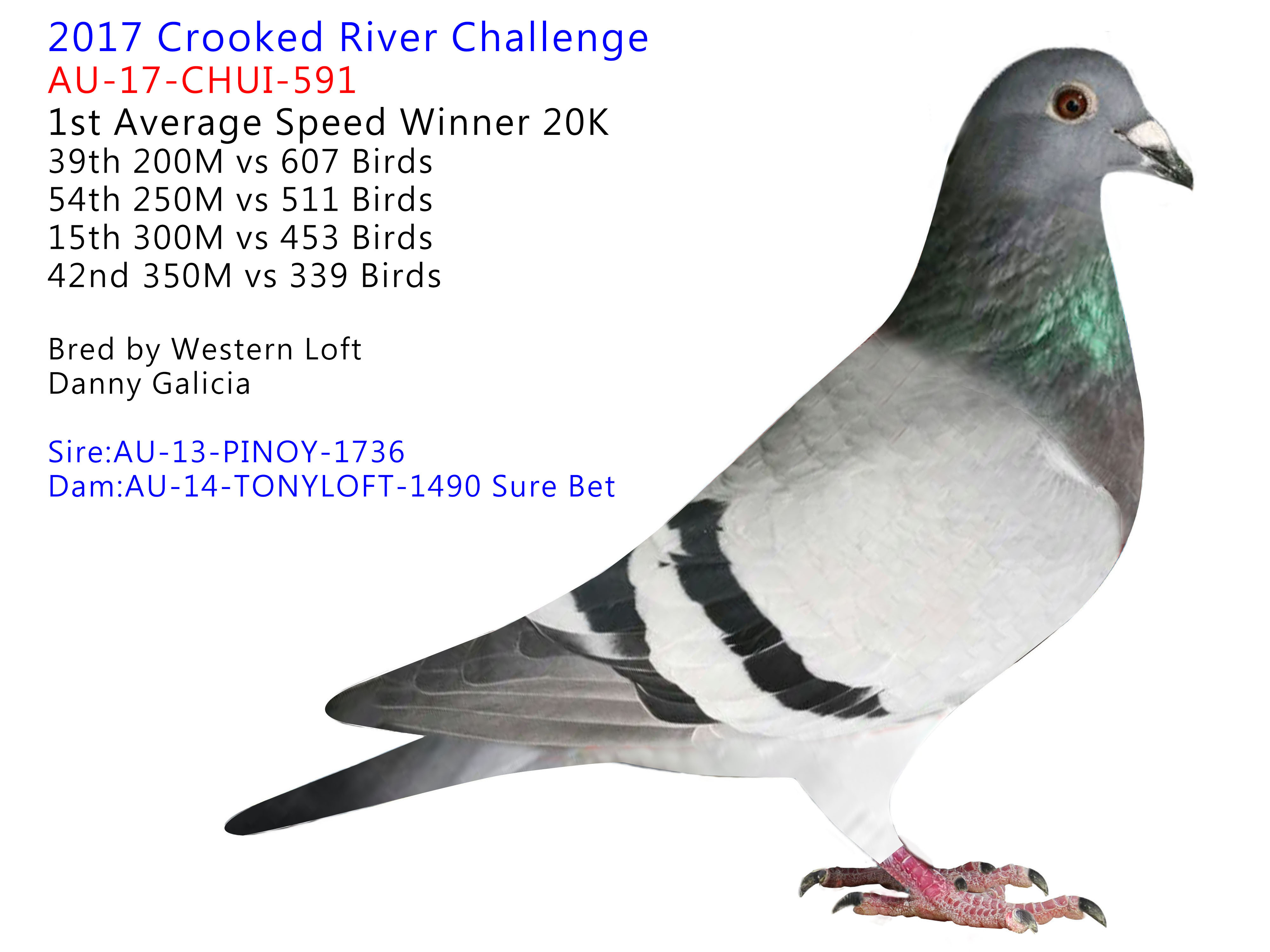 2017 Crooked River Challenge 1st Average Speed