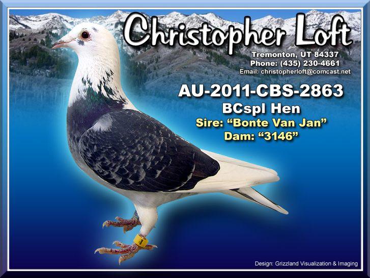 AU-2011-CBS-2863