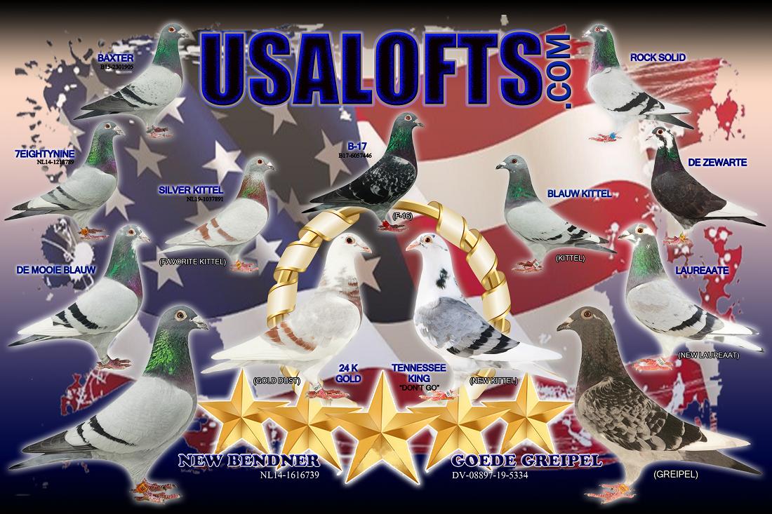 USALOFTS.com