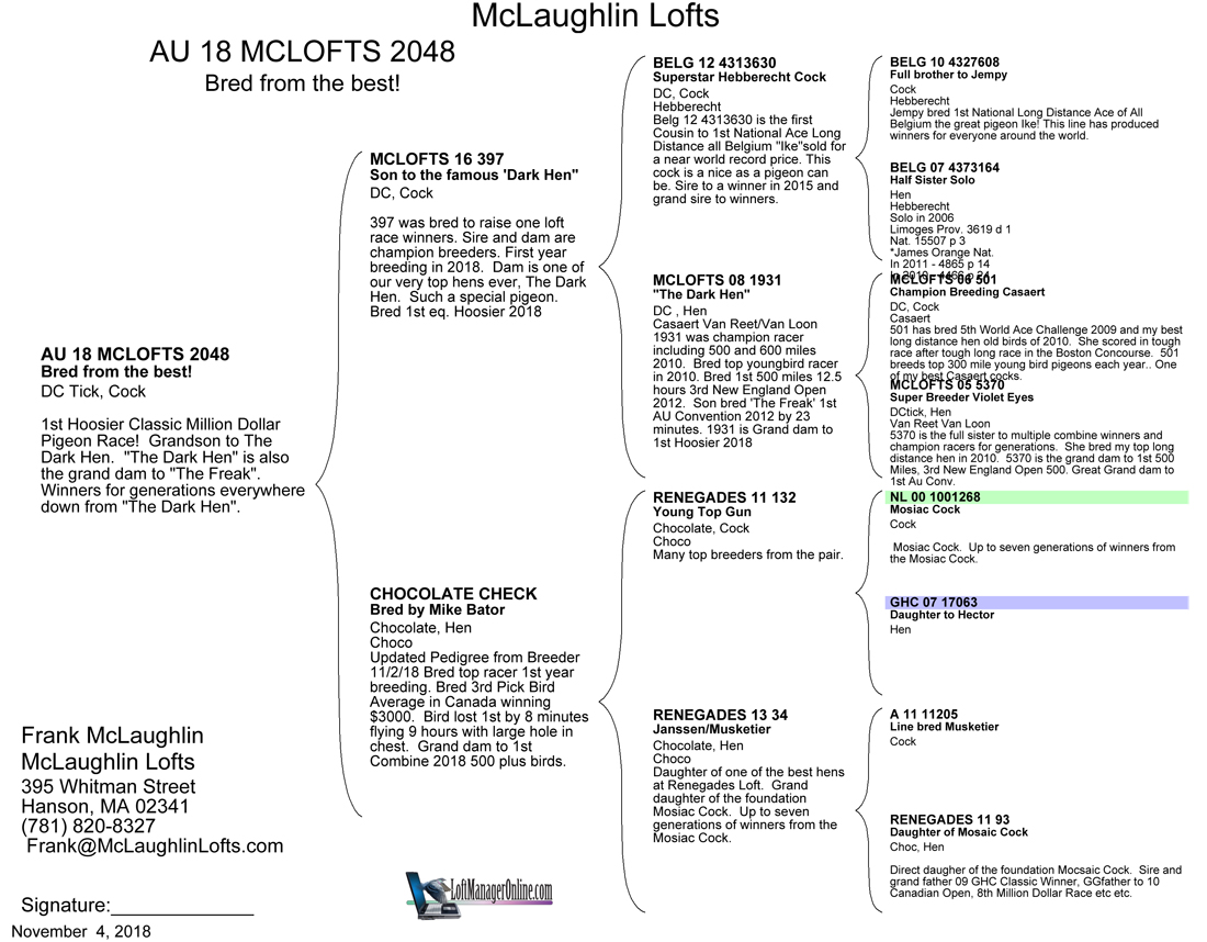 1st     2048-AU18-MCLO   DcPD H       Tigre Loft – WI       Stormbird         1st Drop