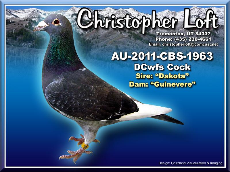 AU-2011-CBS-1963