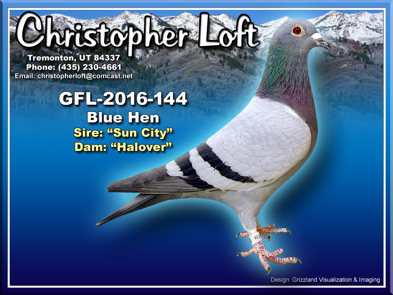 GFL-2016-144