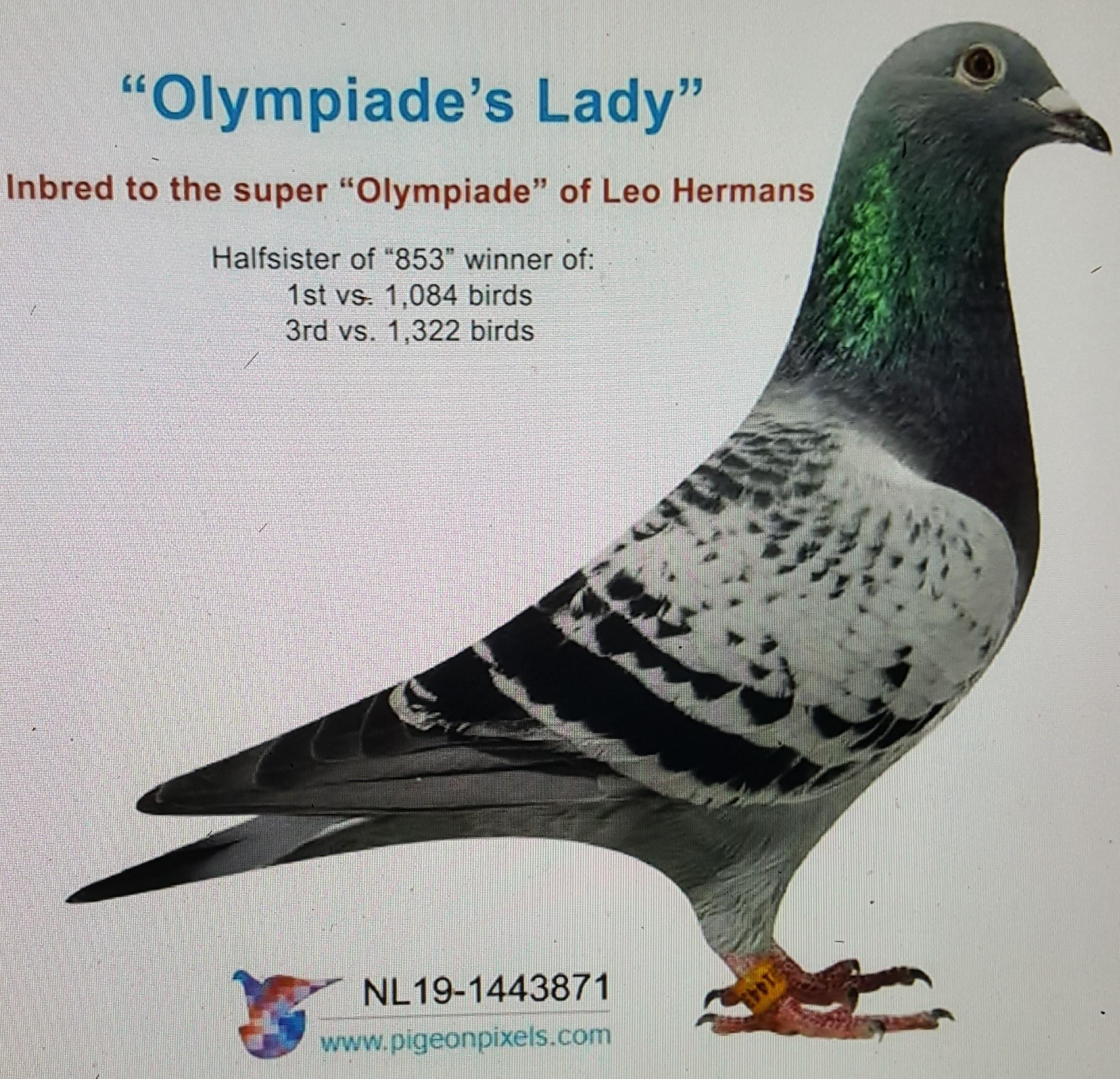 OLYMPIADES LADY LEO HEREMANS