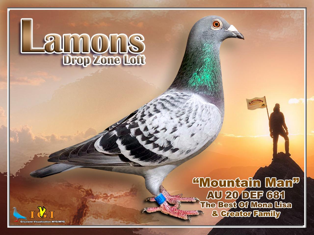Mountain Man (Cock)