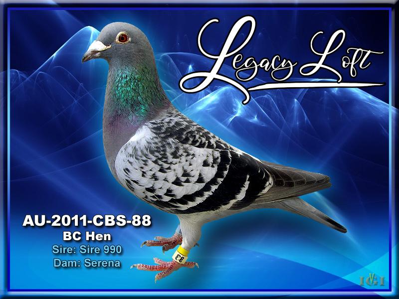 AU-2011-CBS-88