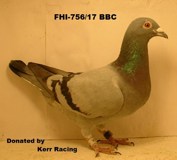 FHI-756/17 BBC