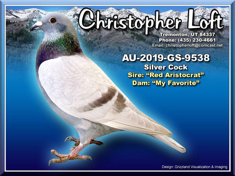AU-2019-GS-9538