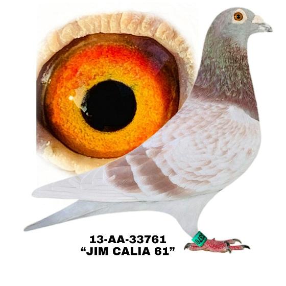 13-AA-33761 RC Cock.