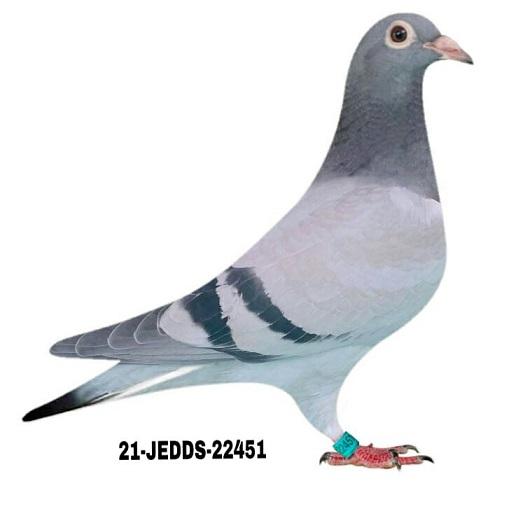 21-JEDDS-22451 BB.