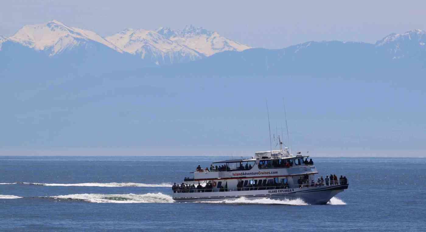 Washington State Whale Watching Island Explorer 4