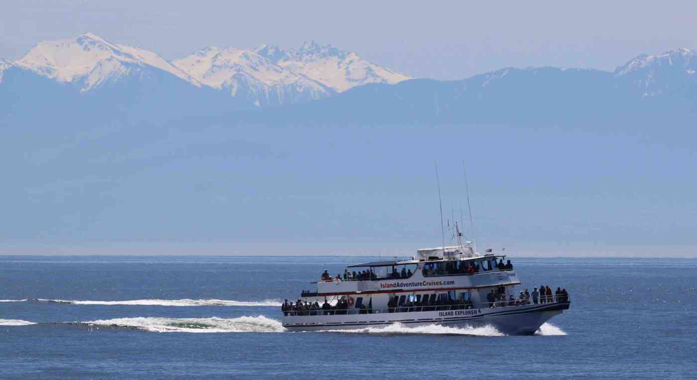Washington State Whale Watching Island Explorer 4