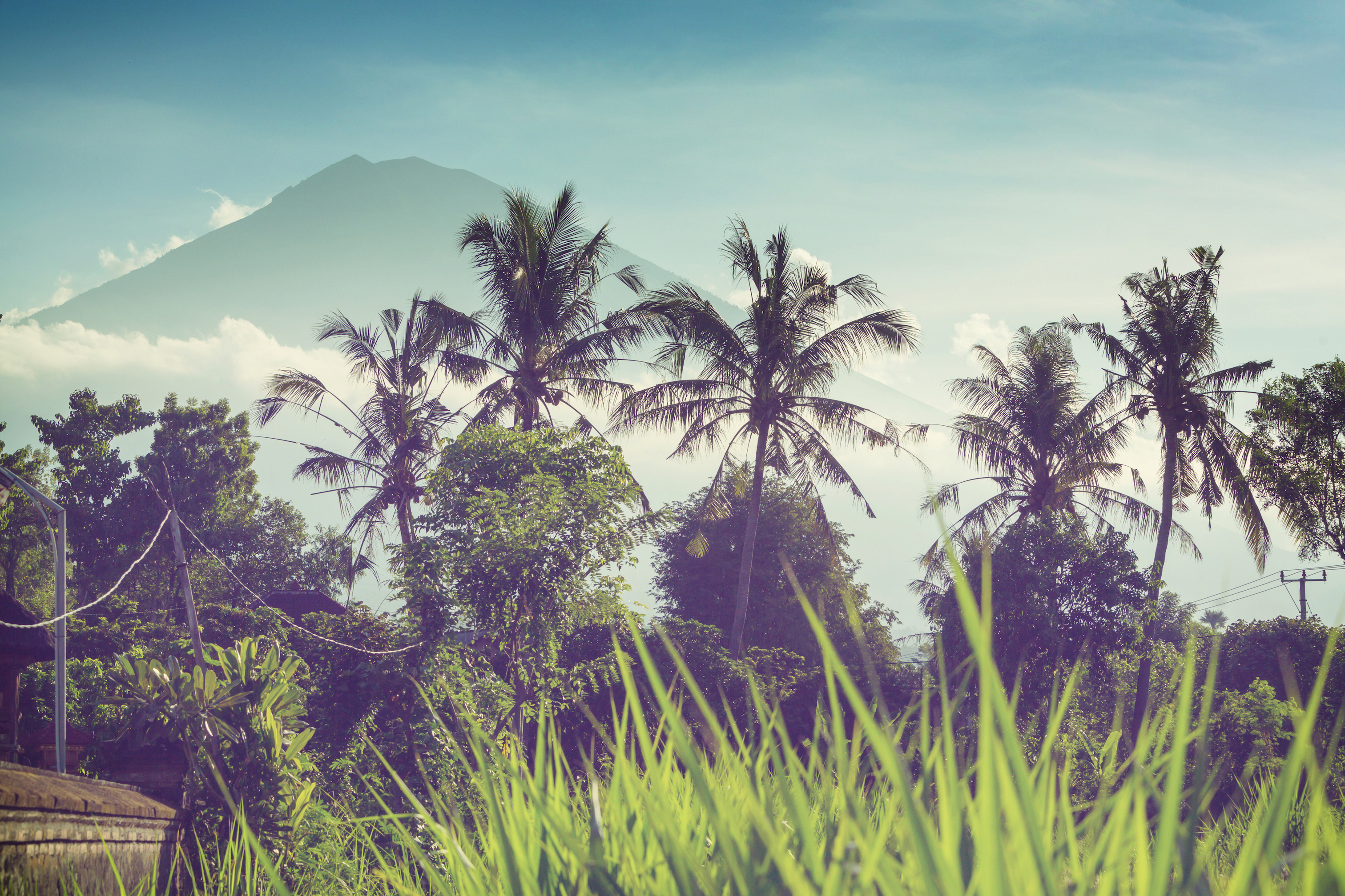 Soak in the beautiful landscape of Bali as you learn in a supported space