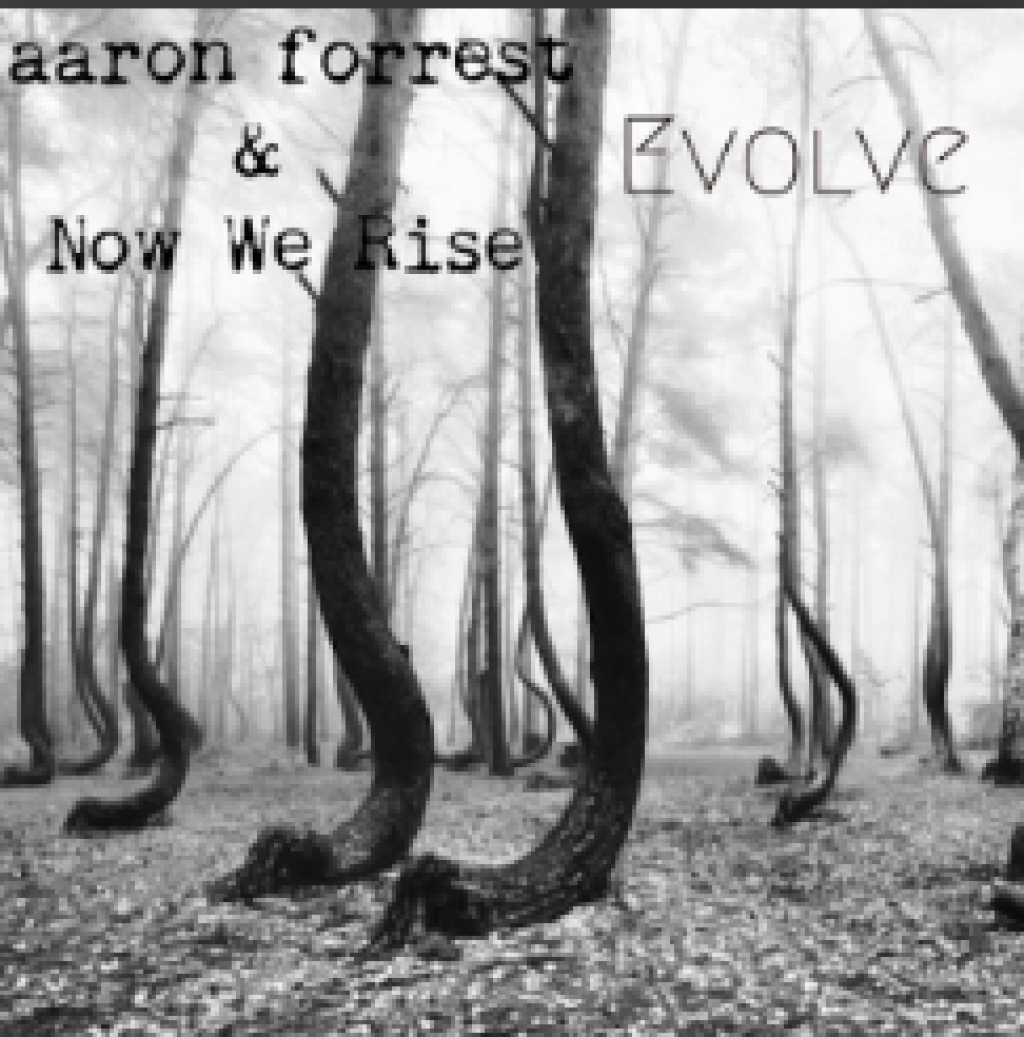 Evolve  Aaron Forrest  Now We Rise