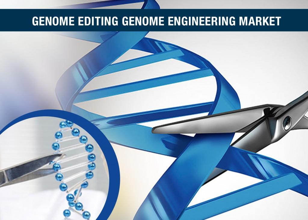 genome editing genome engineering market