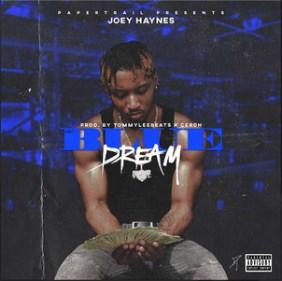 Blue Dream by Joey Haynes