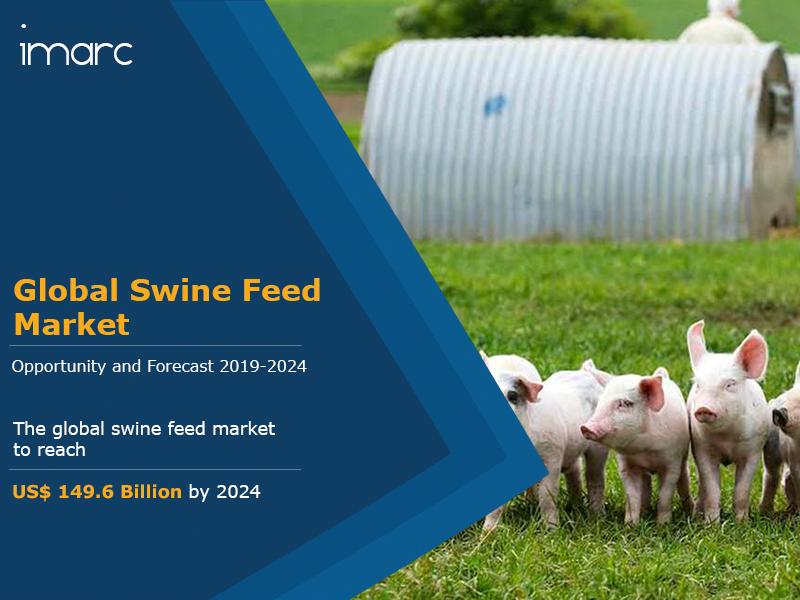 Global Swine Feed Market to Reach US 1496 Billion by 2024