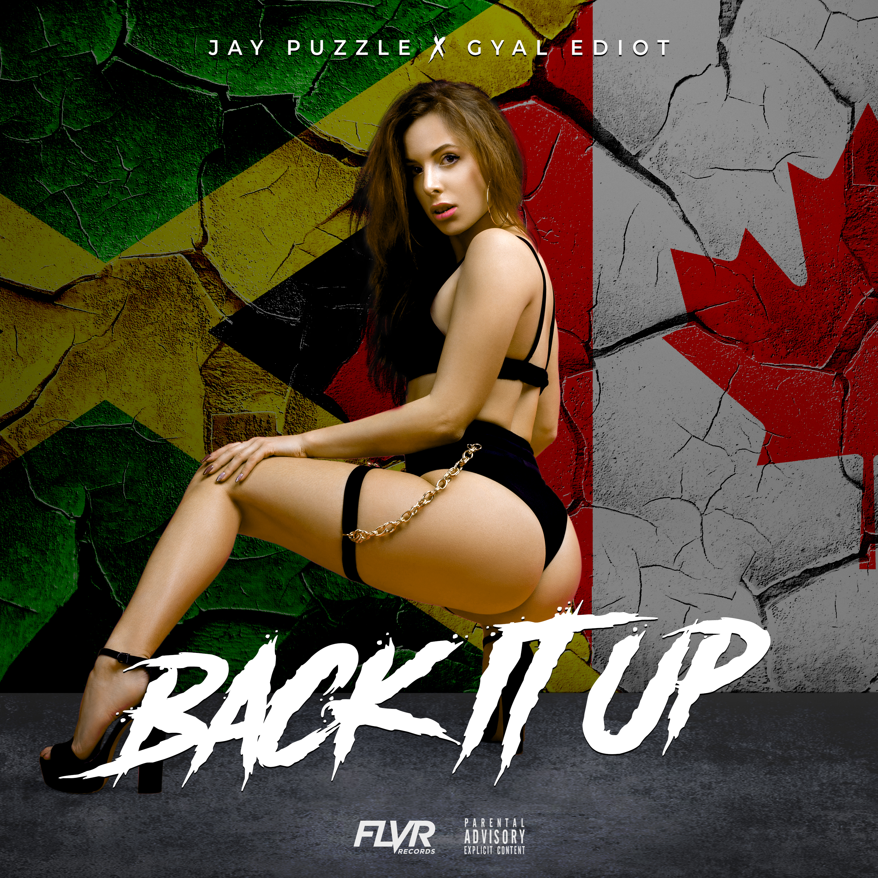 Jay PuzzLe  Back It Up Single