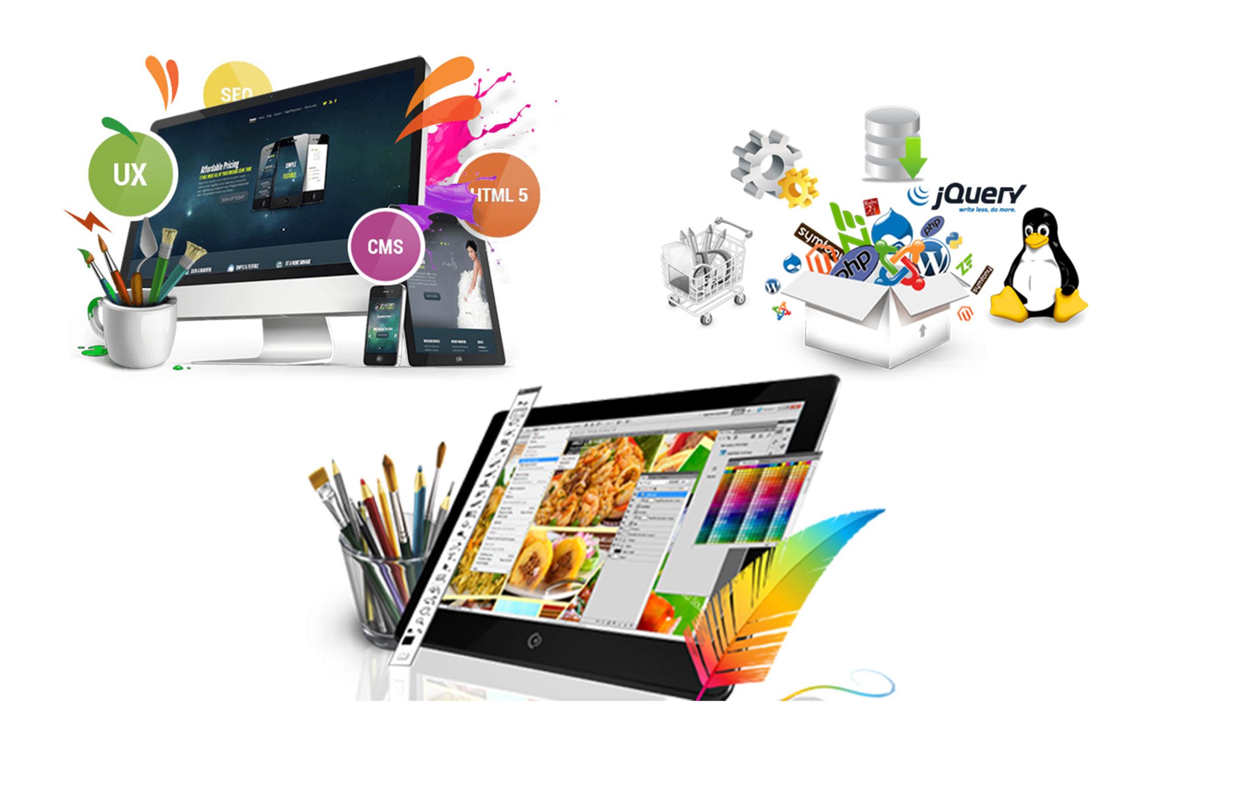 customized software development company
