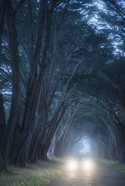 Photograph by Jiayi Liang