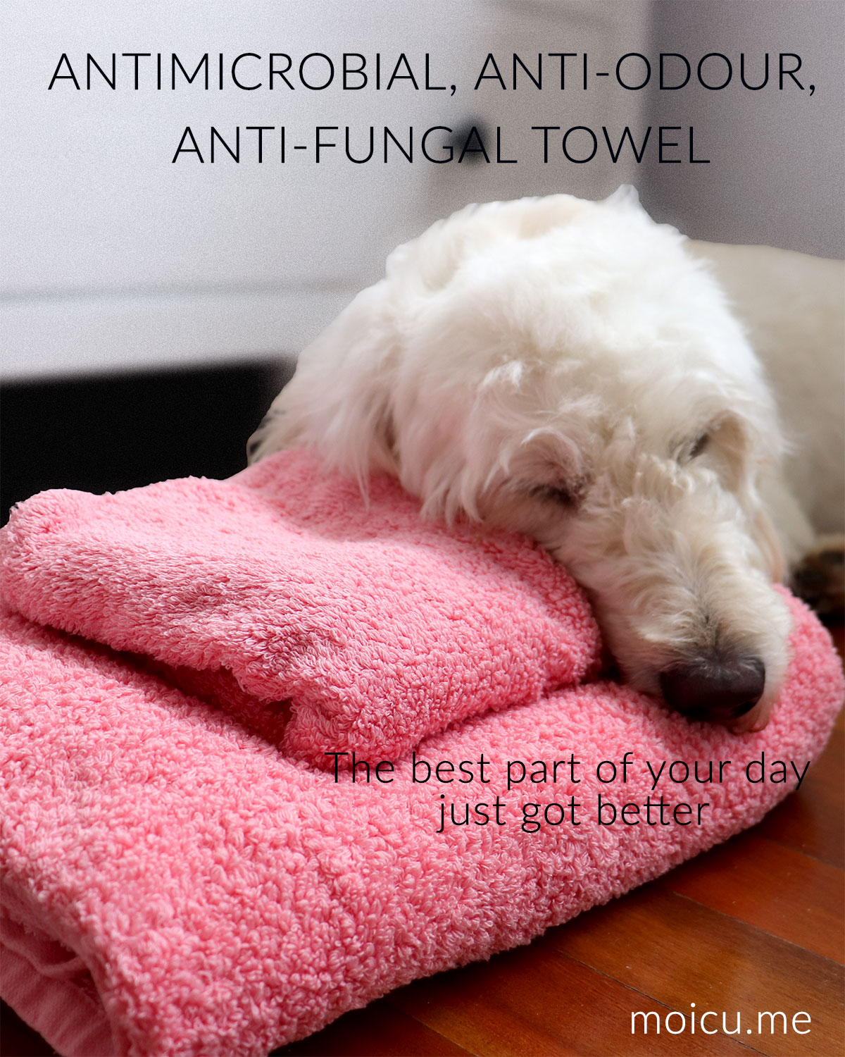 Antibacterial towel protected by Silver ions