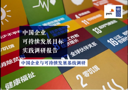 A Survey Report on Business and Sustainability in China