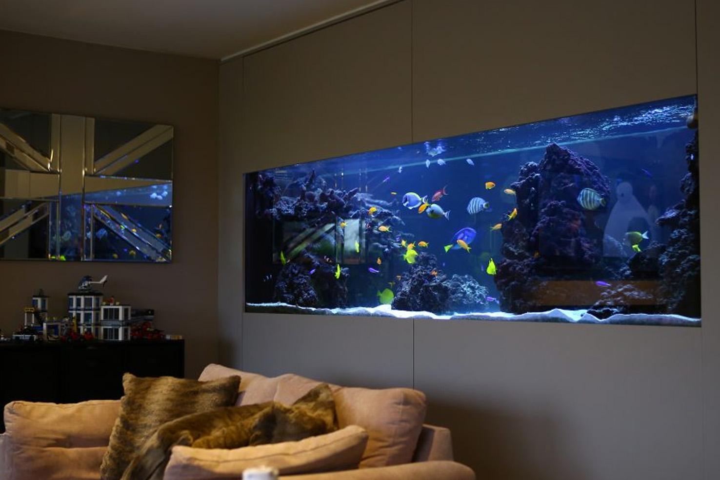 Integrated Bespoke Aquarium