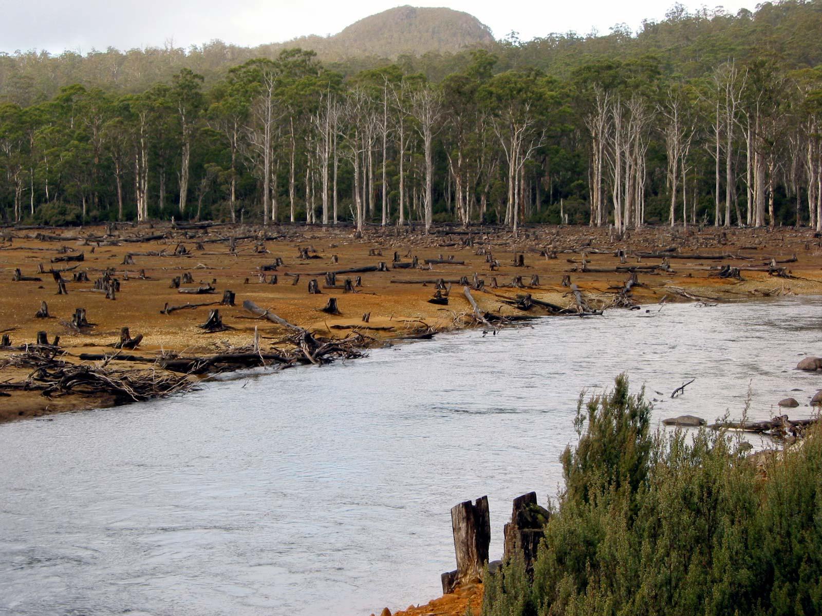 Riverside deforestation Australia