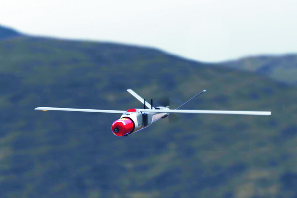 WARBLE FLY Air Target Fire System