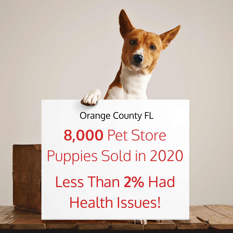 Orange County Pet Store Puppies Ban