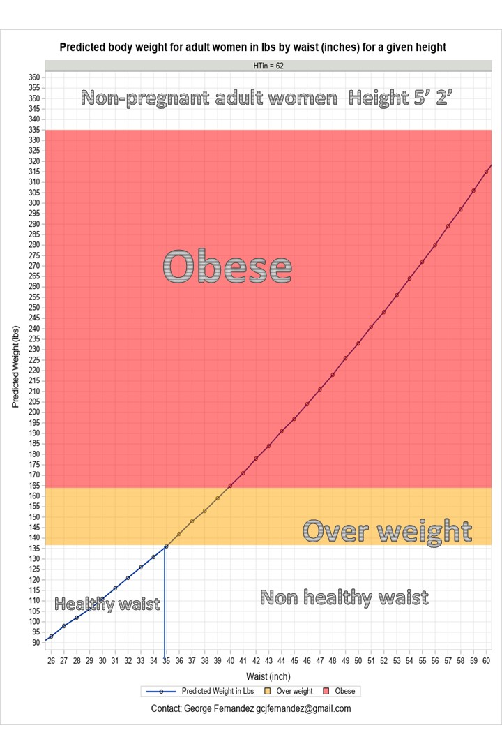 Achieve Fitness Goals By Maintaining Healthy Waist Size With Maximum