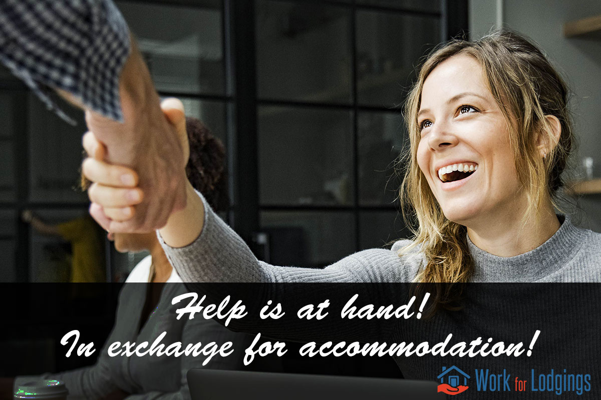 Make new friends on Work For Lodgings