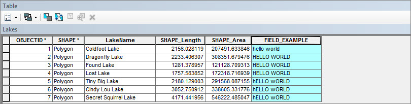 How To: Convert a string to proper case in the ArcMap Field Calculator