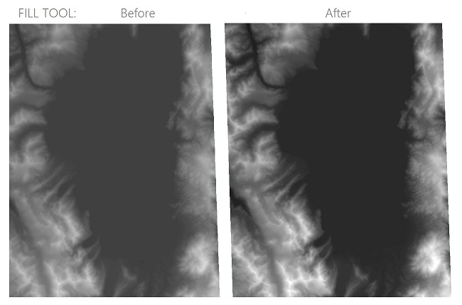 [O-Image] Fill tool results