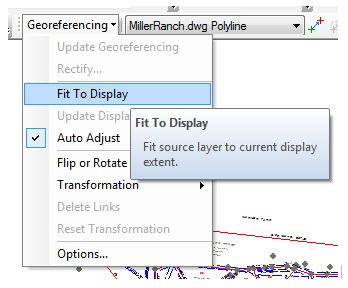 The Georeferencing drop-down menu displaying the Fit To Display option.