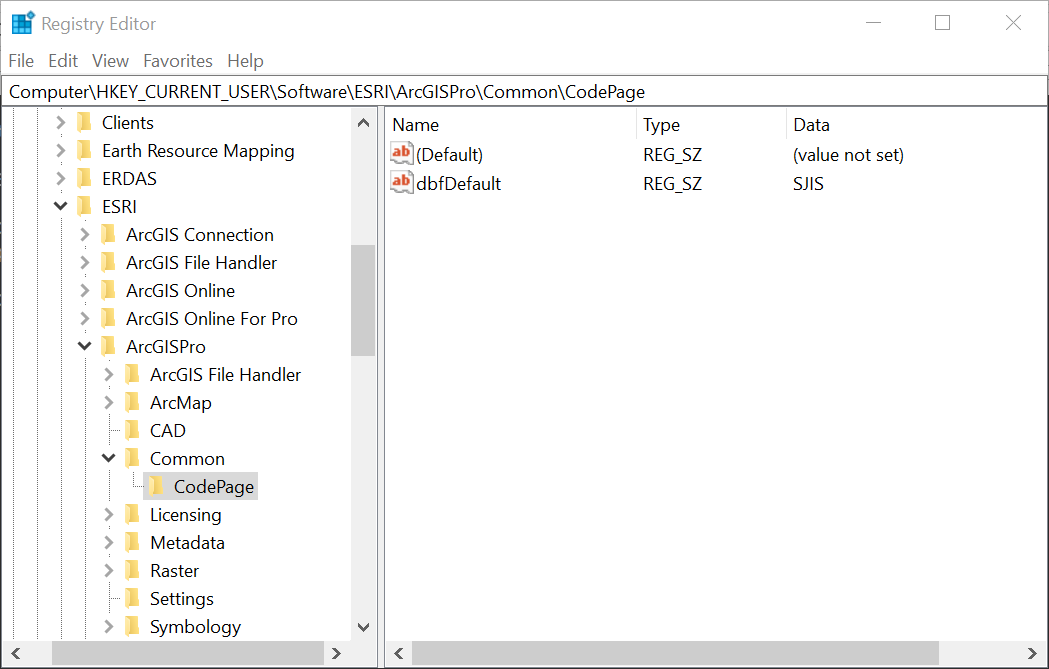 Updated Registry with new code page setting for ArcGIS Pro