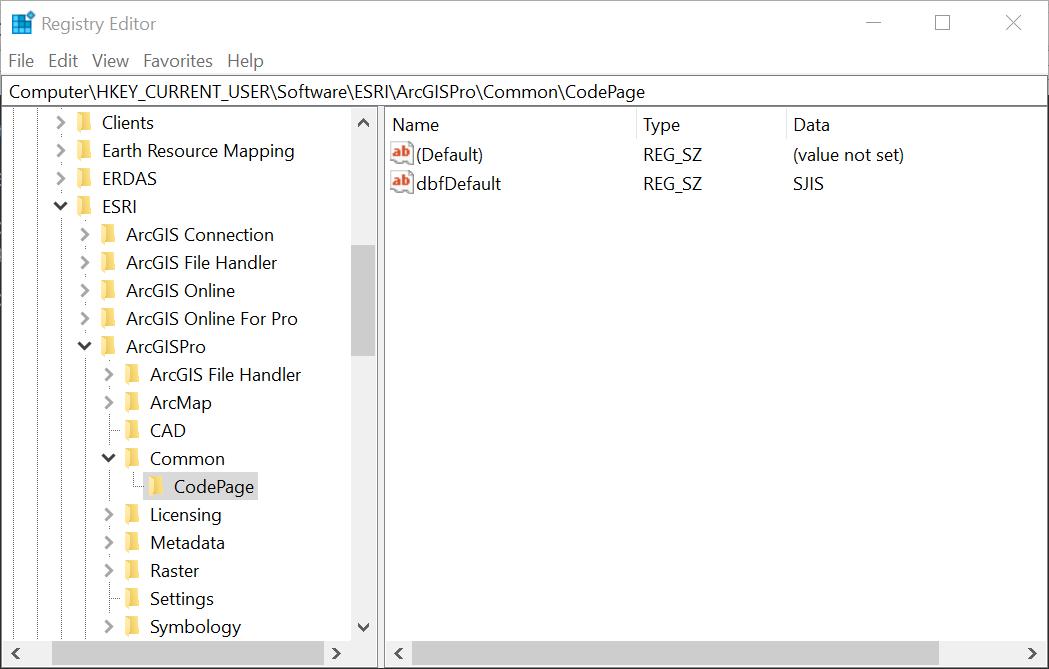 Registro actualizado con una nueva configuración de página de código para ArcGIS Pro