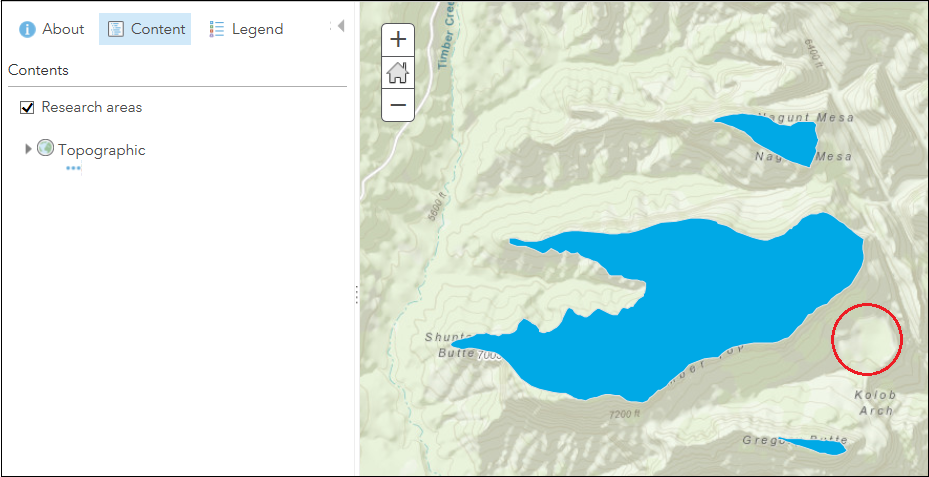 The edits are not preserved in ArcGIS Online Map Viewer