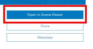 Open in Scene Viewer