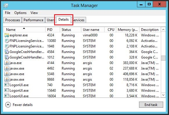 The image of the Details tab on the Windows Task Manager