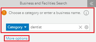 Choose a category or enter a business name and More options option