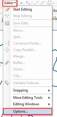 Editor drop-down arrow and Options