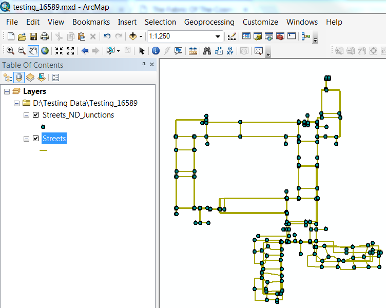 An image of a network dataset in ArcMap.