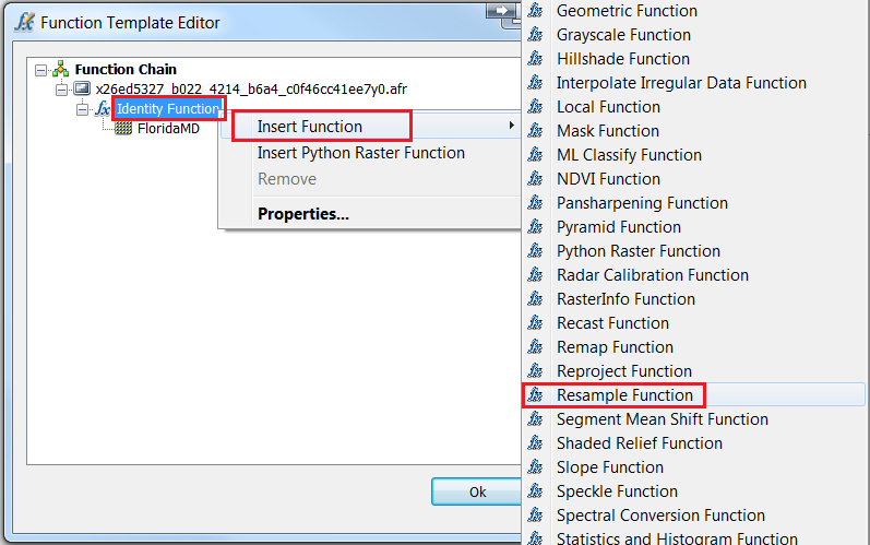An image of the Function Template Editor.