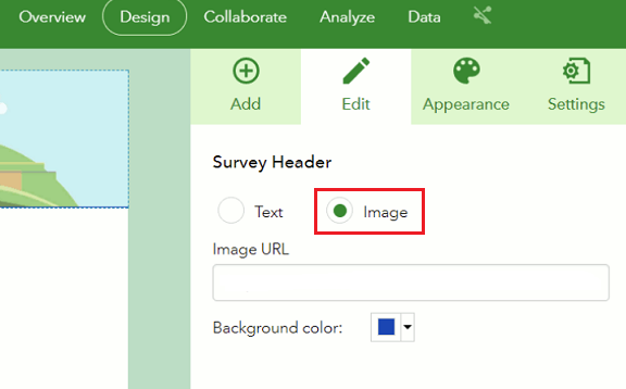 The Image option is enabled in the Survey Header.
