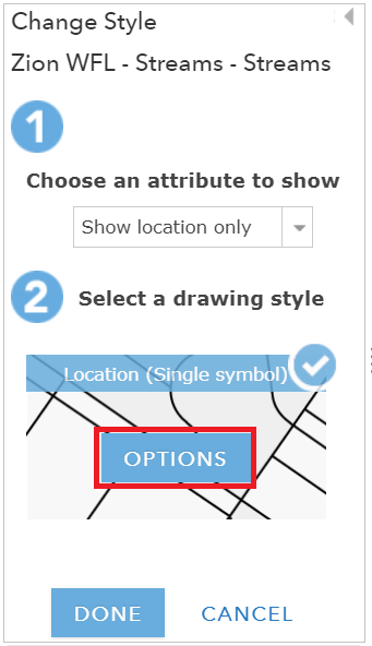 An image the Options button in the Change Style pane.
