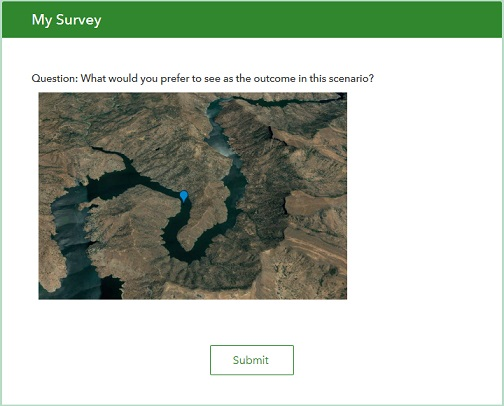 The image appears in the published survey form